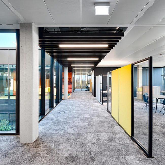 Nickel und Wachter Architekten - Neubau Dr. Pfleger Bamberg